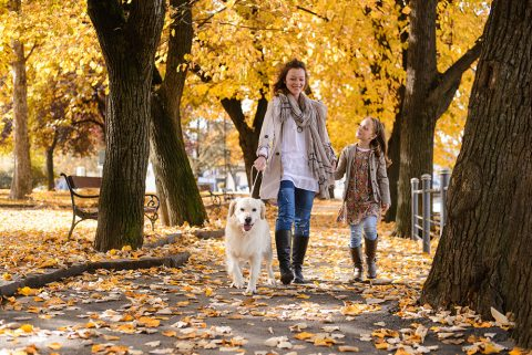 How to get your home ready for winter in columbus oh